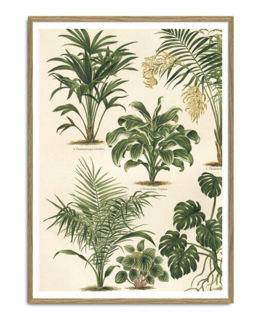 Grean Leaf Plants II Left 30x40 - The Dybdahl Co.