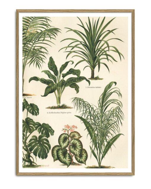 Grean Leaf Plants II Right 30x40 - The Dybdahl Co.