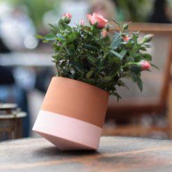 Voltasol Mini lys rosa